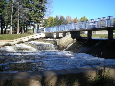 A fish ladder mitigates the impact of a dam in Thunder Bay