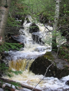 Steep-banked streams receive less input from adjacent runoff